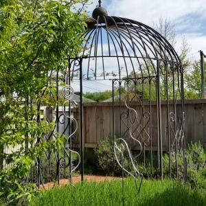 Christchurch Designer Garden