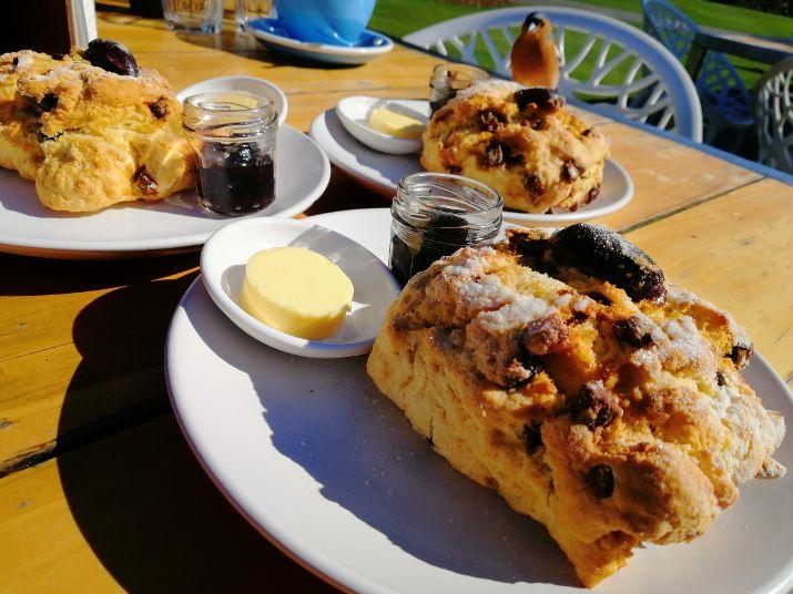 Christchurch B&B Ilex cafe date scones
