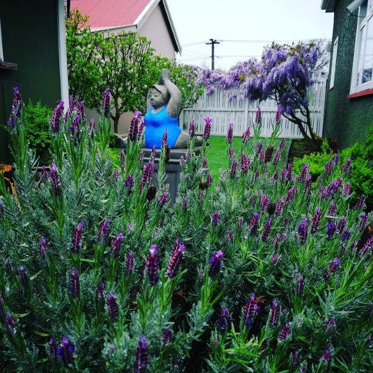 Christchurch B&B Lavender Garden