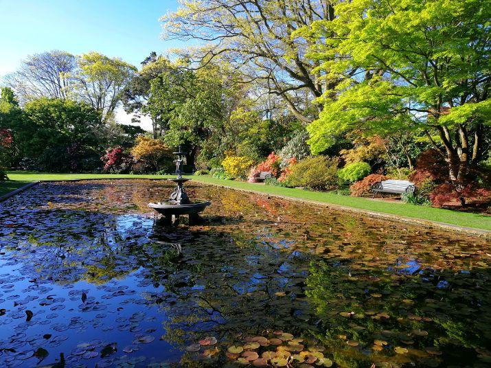Christchurch B&B Mona Vale.jpg