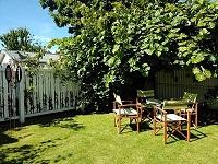 Cottage 55 Kiwi fruit tree