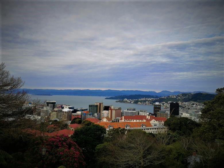 Wellington View NZ Bnb