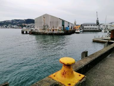 Wellington Waterfront 1